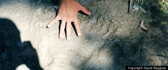 Bigfoot Print 2008