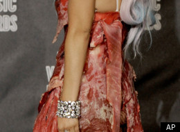 Gaga Meat Dress