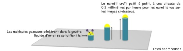 nanowire 4