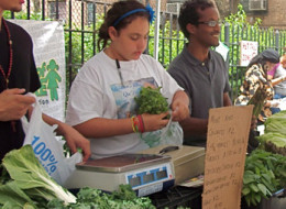city farmers pet store vendor guidelines