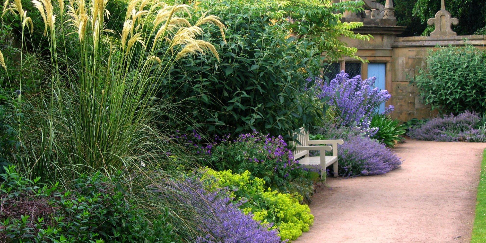Comment d sherber son jardin sans produits chimiques ce - Amenagement jardin sans pelouse ...