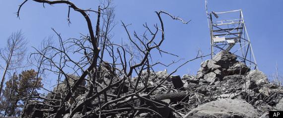 ARIZONA WILDFIRE ENDANGERED SPECIES