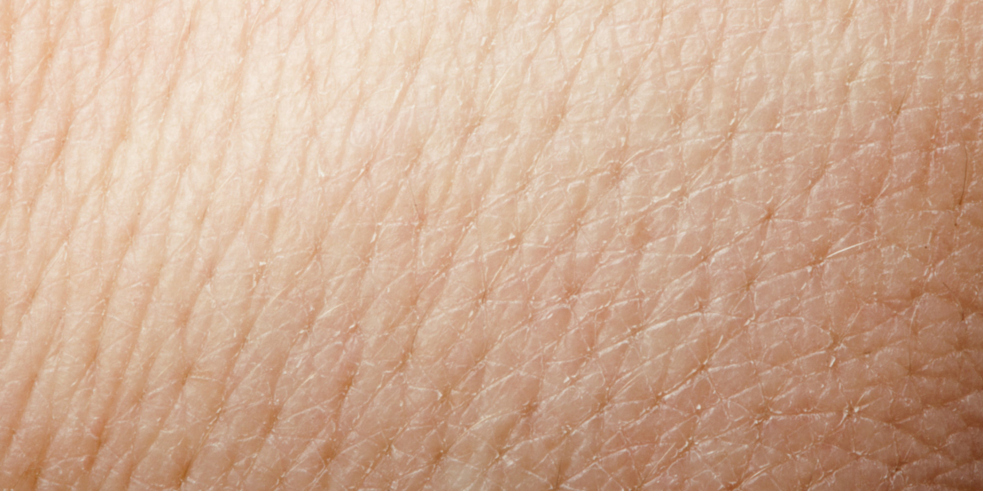 L'Oreal To Begin 3D Printing Skin In A Bid To Convince You ...