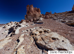 Scientists Shocked To Find Life In The Driest Place On Earth