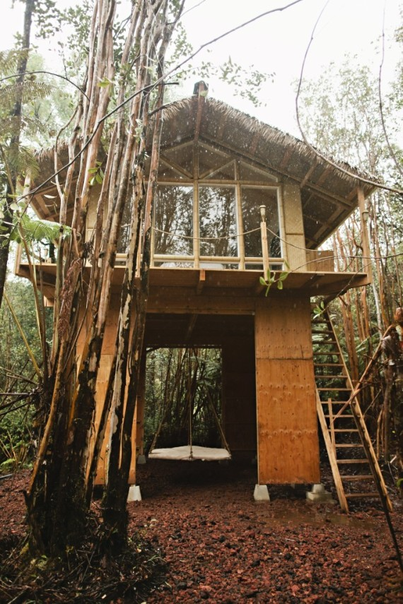 This Tiny Hawaiian Treehouse Is All Your Dreams Come True And It S
