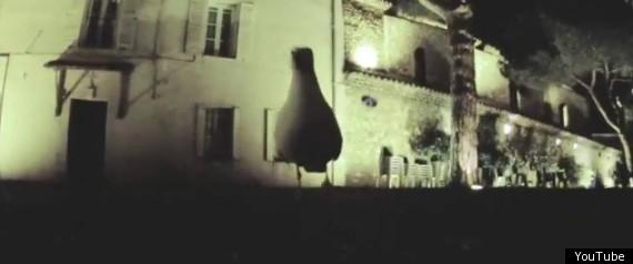 SEAGULL STEALS CAMERA VIDEO