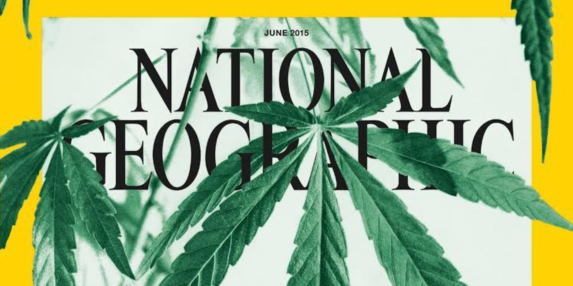a look at the scientific use of marijuana Recreational use of cannabis is already permitted in nine us states, and  takes  a look at the health risks and benefits associated with marijuana use:   ultimately, says scientists, far more research into the drug is needed.