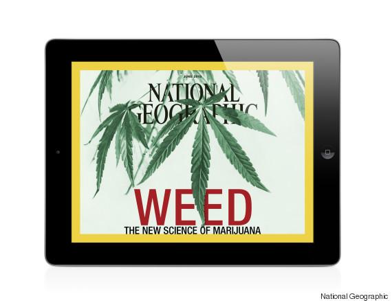 ipad weed cover