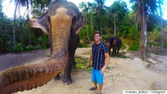 egoportrait elephant