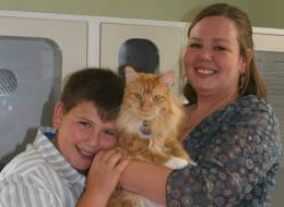 Boy And His Cat Show Why More Domestic Violence Shelters Should Allow Pets