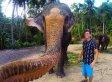 Extraordinary Elephant Selfie Goes Viral