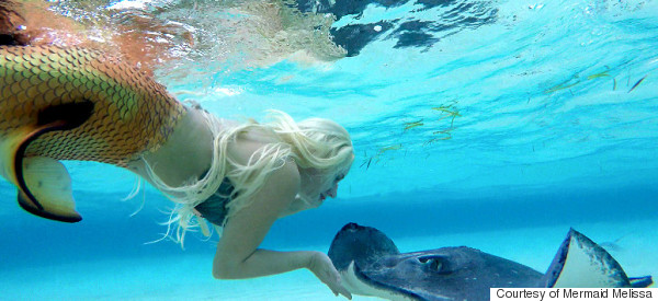 Professional Mermaid Gets Along Swimmingly With Ocean Sea Life