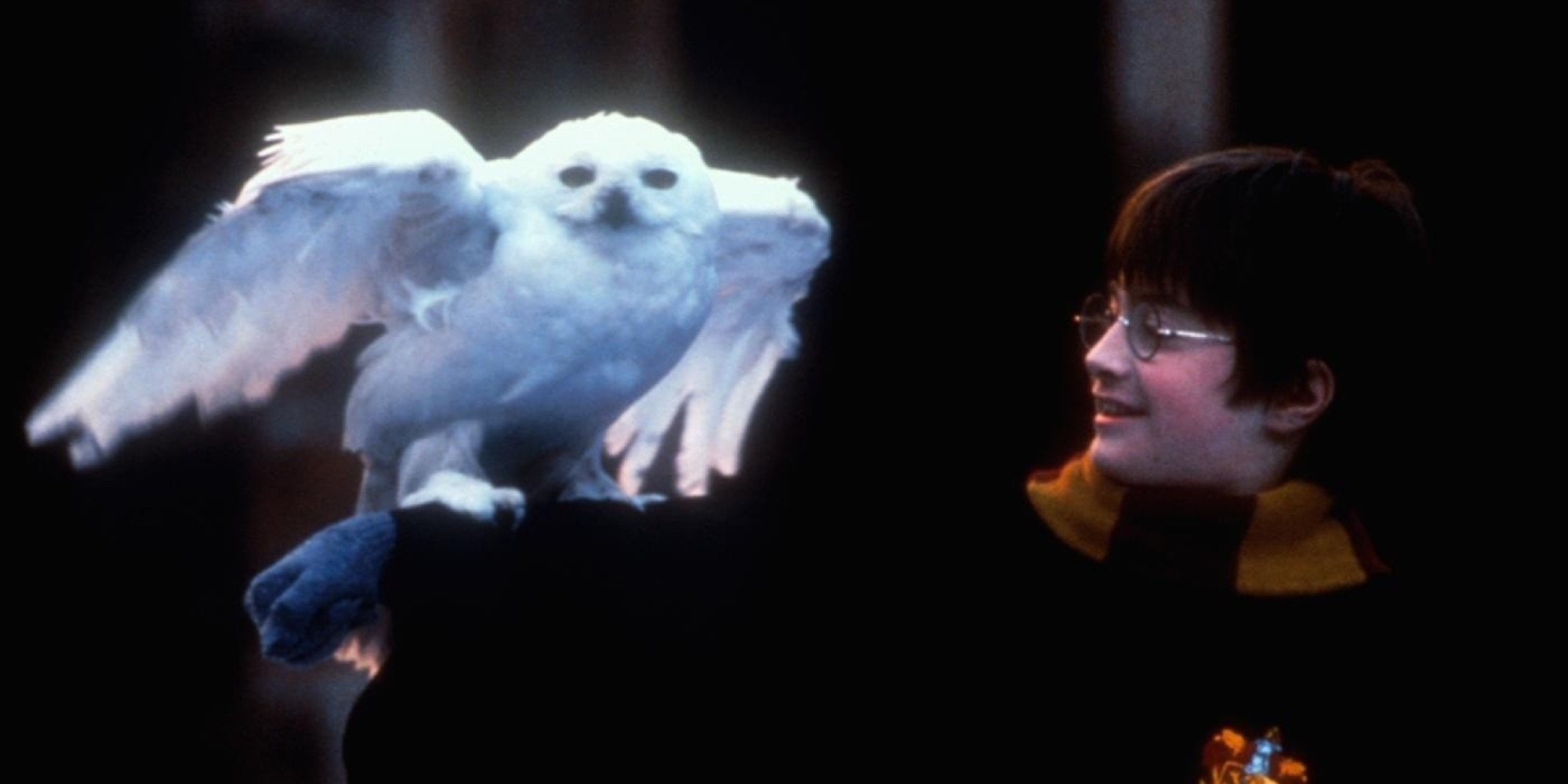 'Harry Potter' Has One Huge Plot Hole You Might've Missed ...
