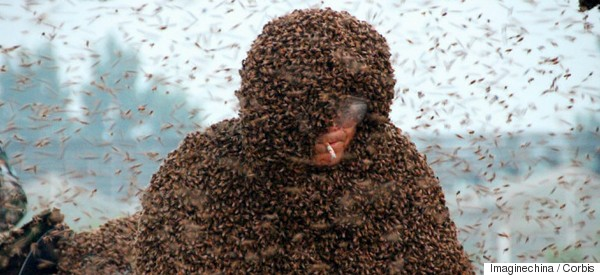 Man Wears Suit Made Of 1.1 Million Bees In Attempt To Set World Record