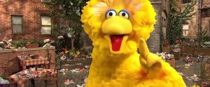 BIG BIRD BIG PUN RAP