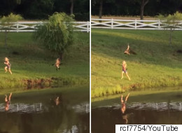 Girl Gets Chased By Goose, Dad Finds It Unacceptably Hilarious