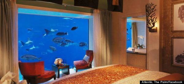 Incredible Hotel Suite Lets You Sleep Under The Sea