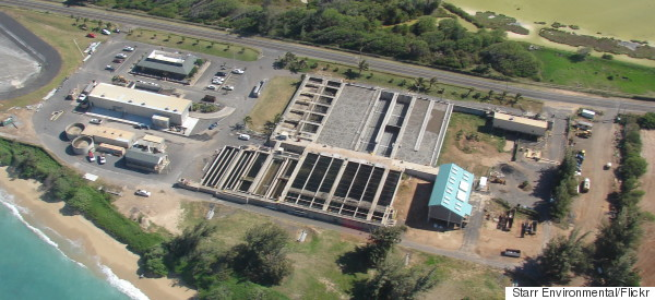 Human Fetus Found At Maui Waste Water Plant