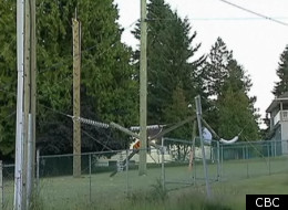 Surrey Hydro Tower Collapse