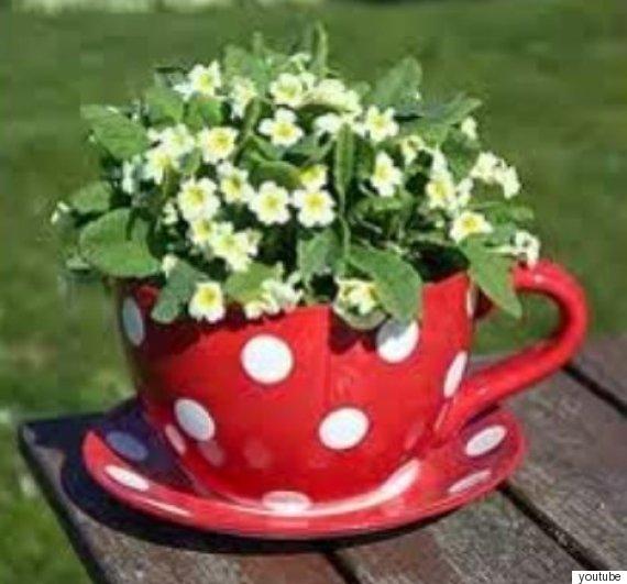 ceramic cup planter