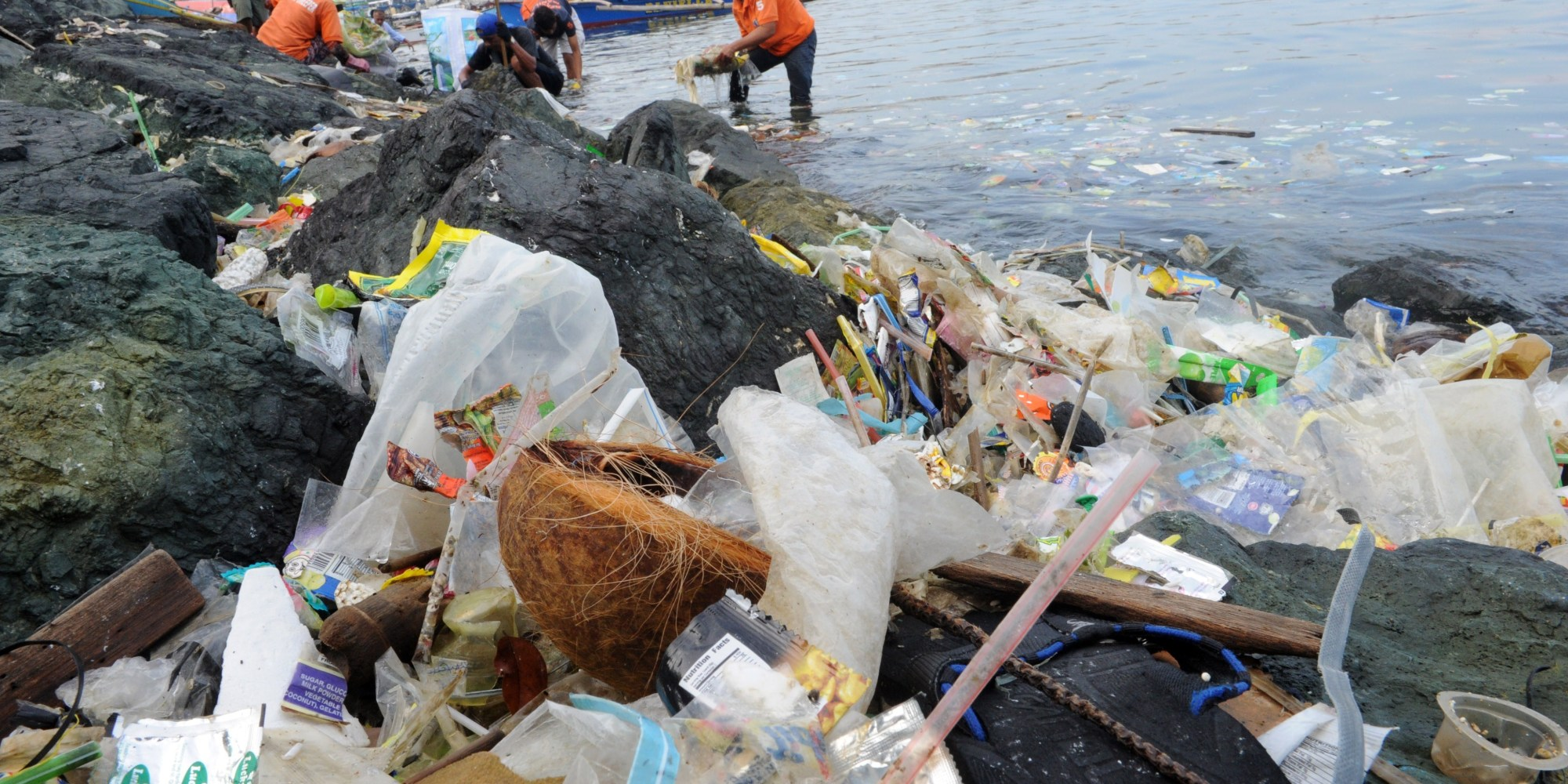 plastic in the ocean essay Emy metzger 52714 the overlooked effects of plastic in the ocean one of the most important current topics for discussion regarding the environment is.