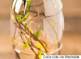 코카콜라 세상에서 가장 아름다운 플라스틱병을 만들다(사진)