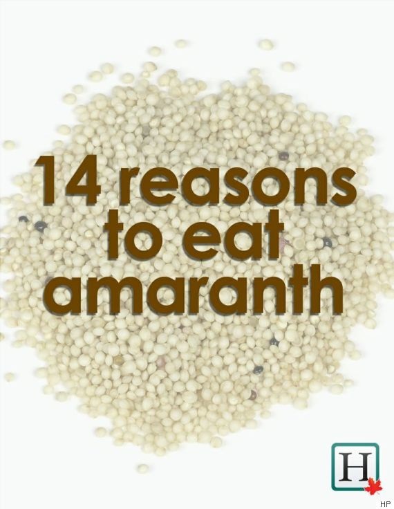 benefits of amaranth 14 reasons to get into this grain