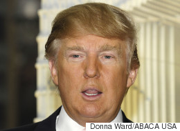 Donald Trump's Hair Announces Candidacy For President Of The United States