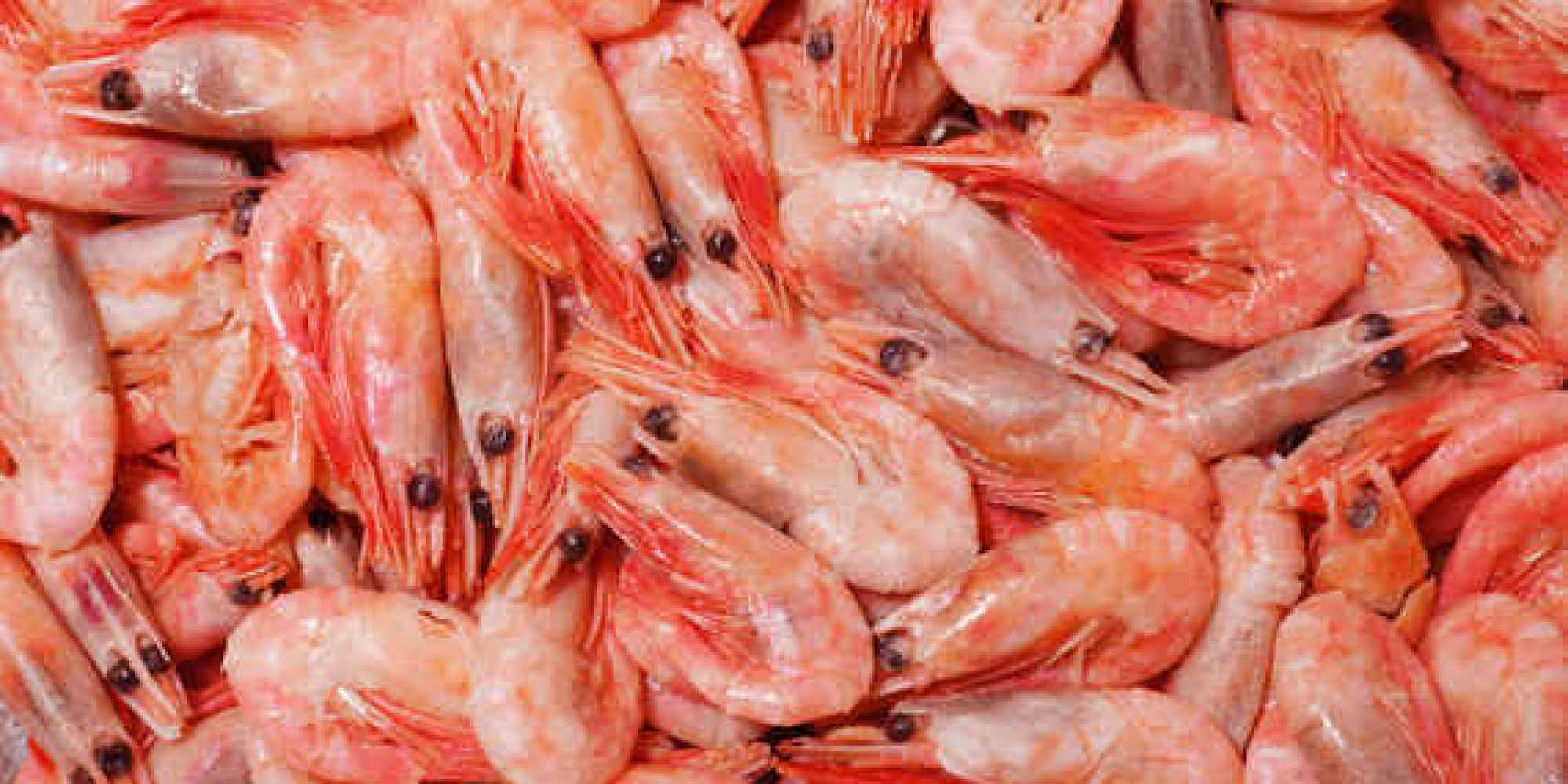 10 types of seafood you really shouldn 39 t eat and 10 you for What does a tuna fish look like