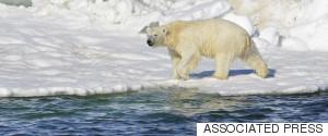 ALASKA MELT