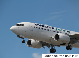 WestJet Employees Removed From Duty After Sex Assault Allegations