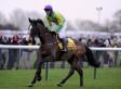 Champion Race Horse Kauto Star Put Down After Paddock Fall
