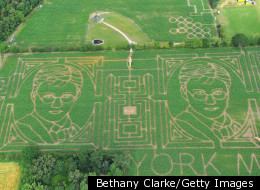 VIDEO: Corn Mazes Can Be A-maize-ing -- But Are They Art?
