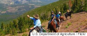 US DEPARTMENT OF AGRICULTURE FLICKR