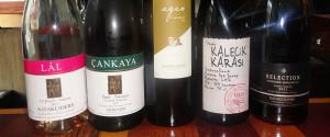 Vins Turcs