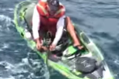 Fisherman is knocked out of kayak by shark | Pic: Youtube