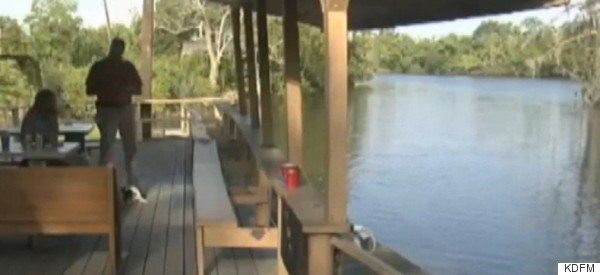 Swimmer Killed After Ignoring Alligator Warnings