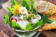 Radieschen-Salat   Bild: Fotolia/Hetizia