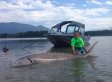 9-Year-Old Catches Giant Sturgeon On Canadian River