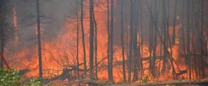 Saskatchewan Fire