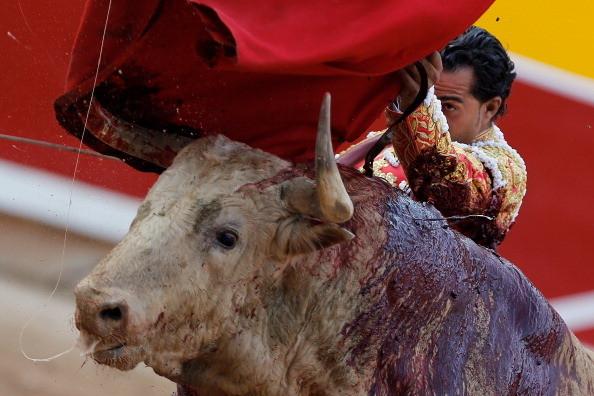 pamplona bull fight