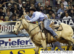 Stampede Cowboy Disqualified For Mistreatment Of Horse
