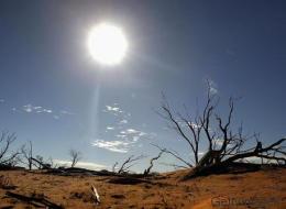 Klimawandel: Warum wir die Wahrheit leugnen