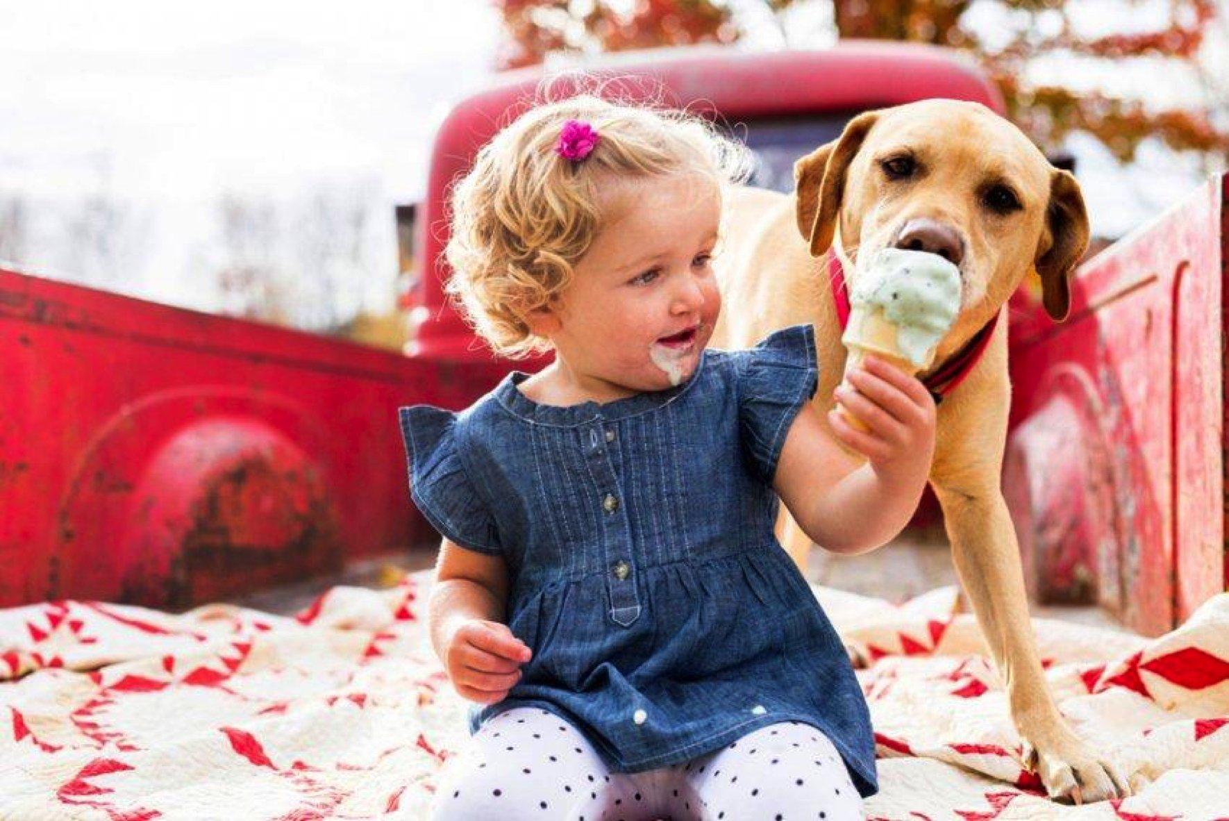girl feeding ice cream to dog