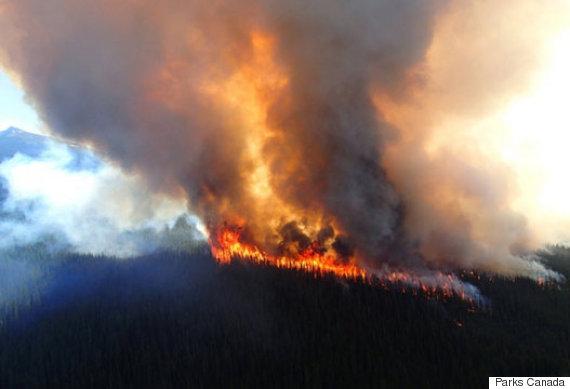 jasaper wildfire