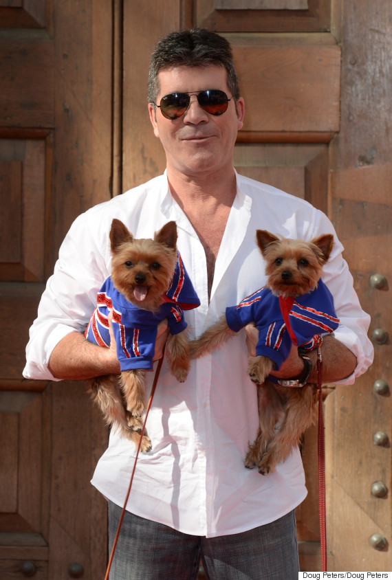 simon cowell dogs