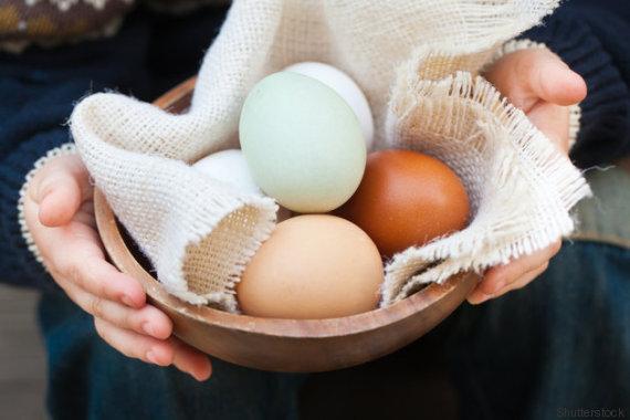 diet eggs