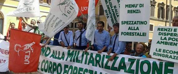 PROTESTA FORESTALI