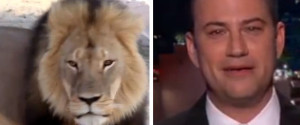 JIMMY KIMMEL LION CECIL