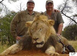 Une pétition pour interdire les trophées de chasse de l'Afrique au Canada